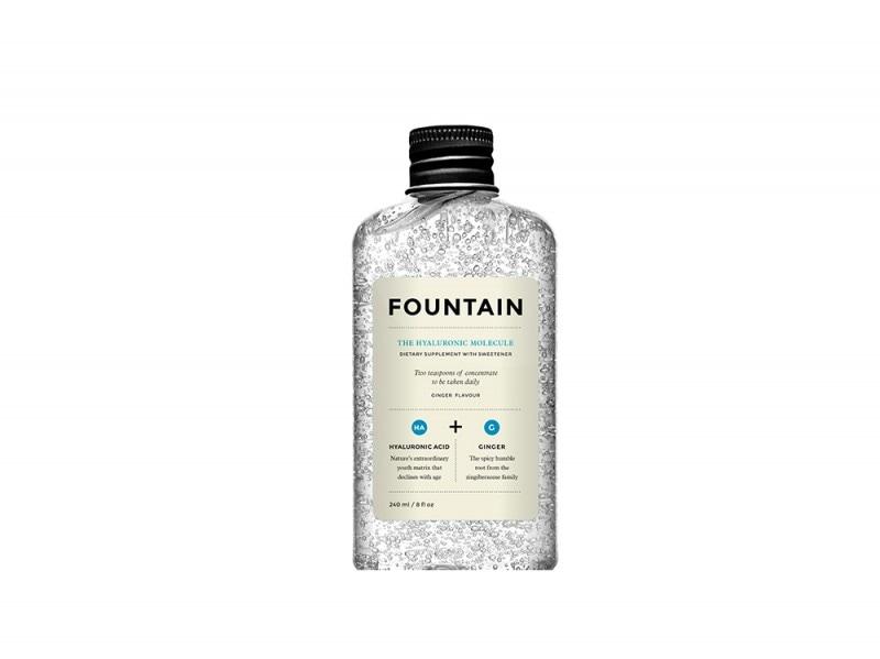 Fountain-The Hyaluronic Molecule