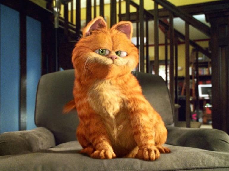 Garfield sul divano