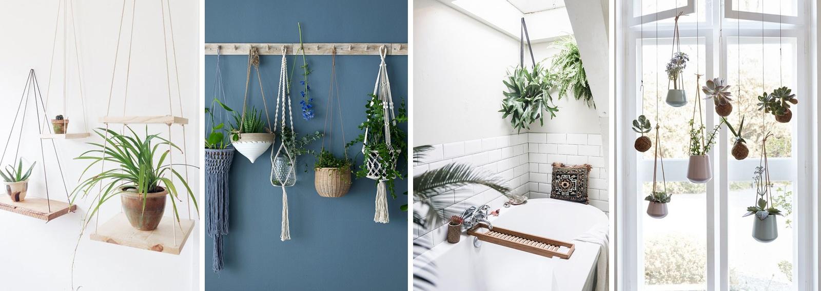 Decorare la casa con le piante appese for Piante in casa