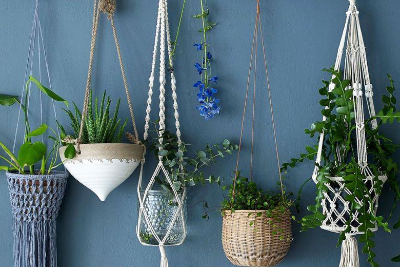 Decorare la casa con le piante appese