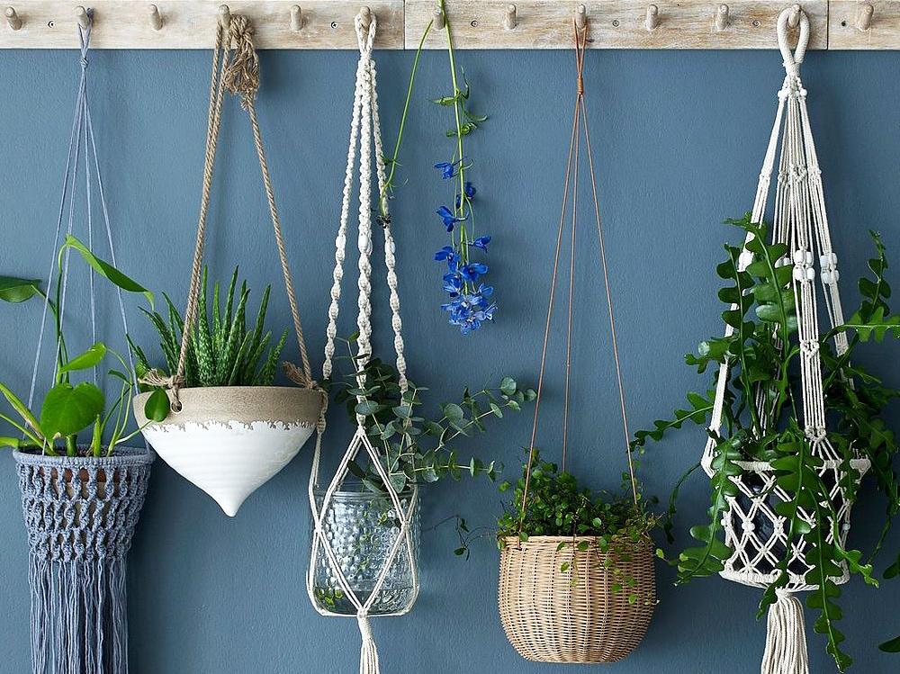 Decorare la casa con le piante appese grazia for Decorare casa