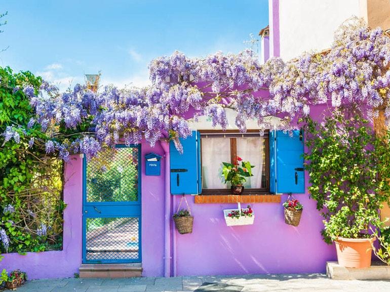 Casa Viola di Burano