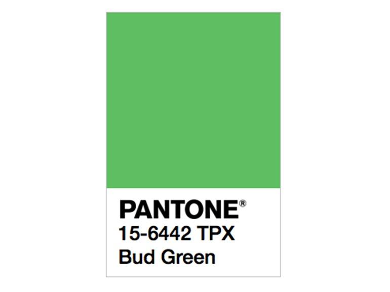 pantone bud green