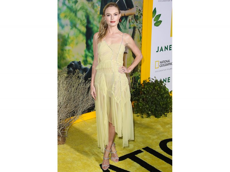 Kate-Bosworth-in-preen-by-thornton-bregazzi-splash