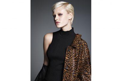 colore capelli saloni autunno inverno 2017 2018 JEAN LOUIS DAVID (1)