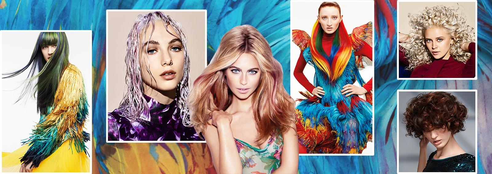 colore capelli saloni autunno inverno 2017 2018 collage_desktop