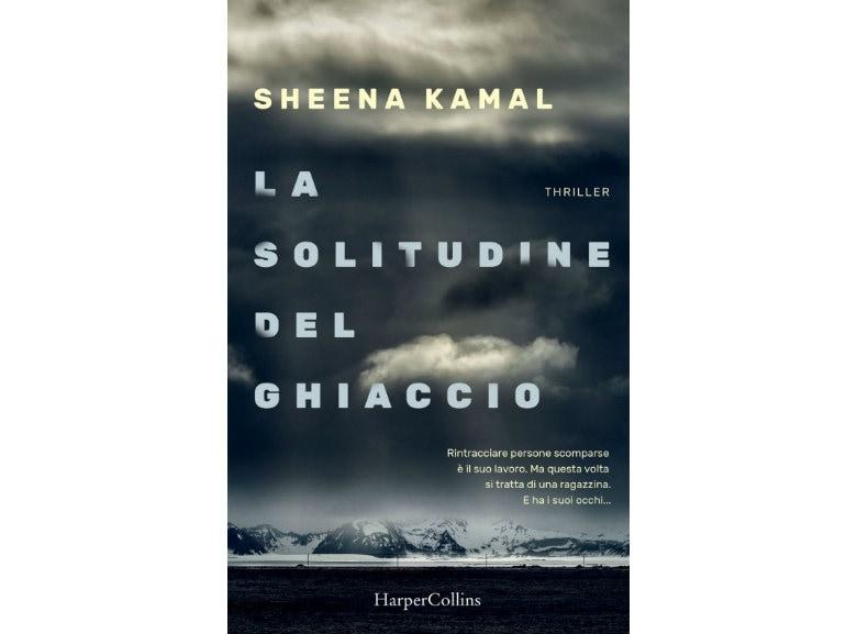 libri-thriller-leggere-in-autunno-la-solitudine-del-ghiaccio