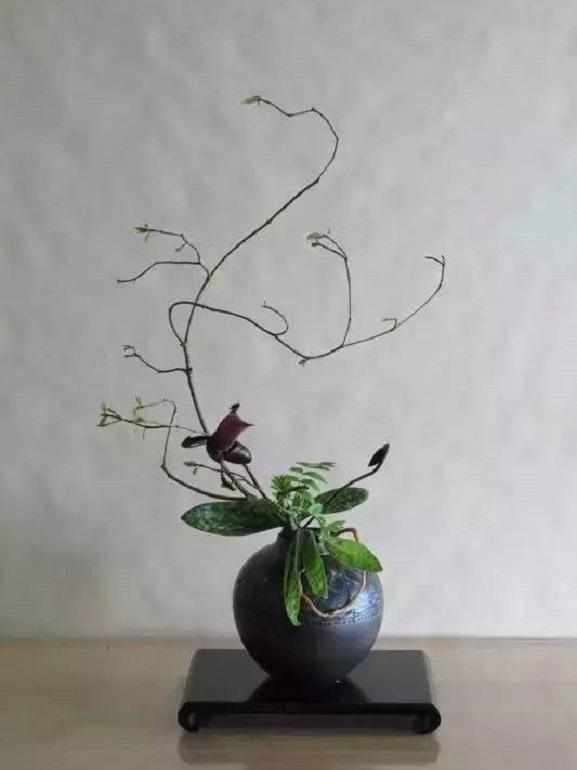 10.ikebana-larochelle-sudouest.com
