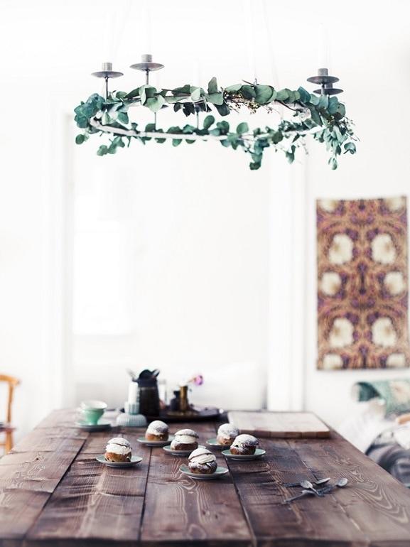Eucalipto candelabro cucina