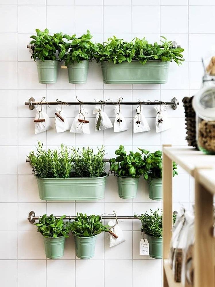 cucina dettagli verdi