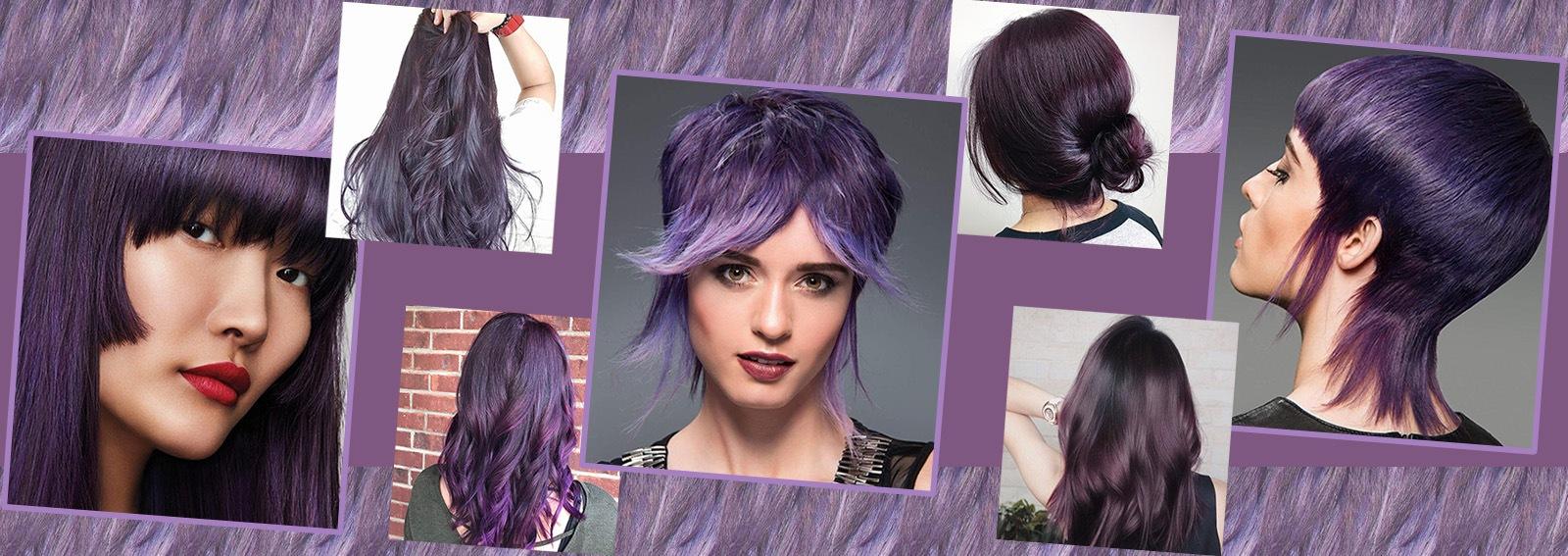 capelli viola scuro collage_desktop