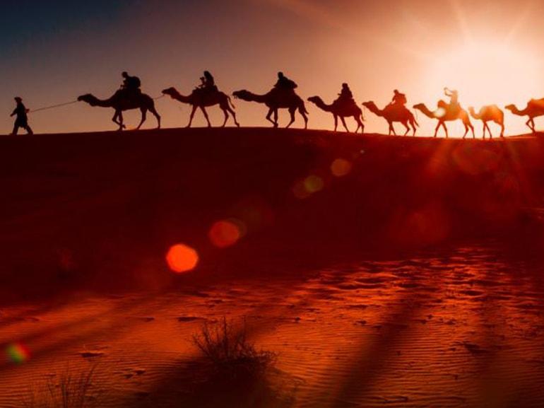 oman cammelli deserto