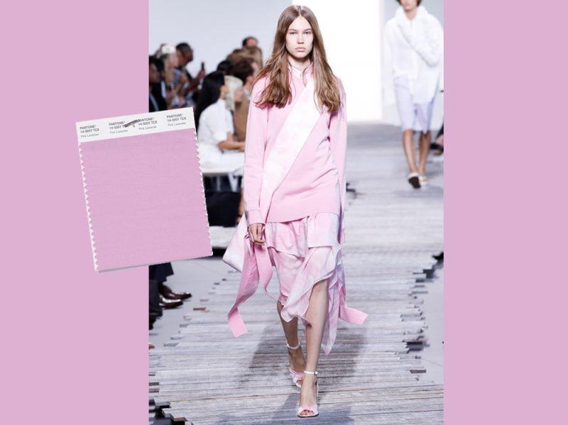01_Pink Lavender