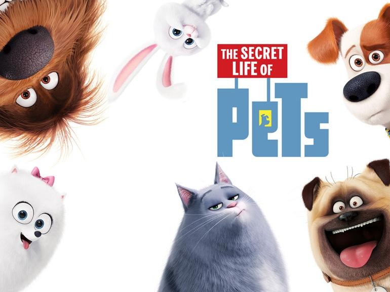 Pets_vita_da_animali