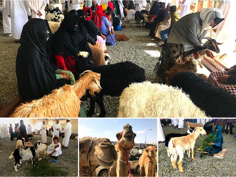 VIaggio in Oman a Sinaw per il mercato del giovedi bestiame beduini donne con maschere beduine