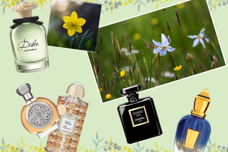 14 fragranze primaverili con il narciso