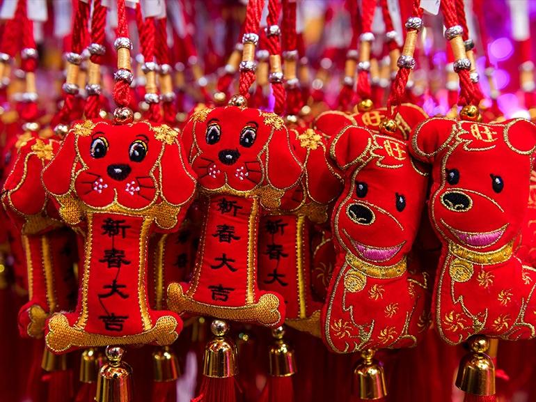 cane portafortuna cinese