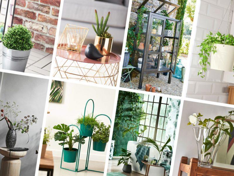 cover-giardini-indoor-mobile