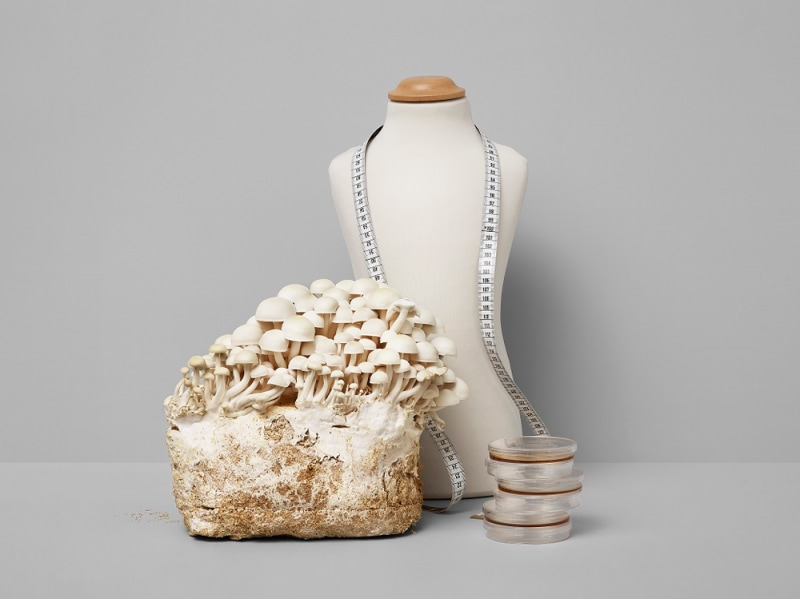 Fungi-Fashion_GCA–2018