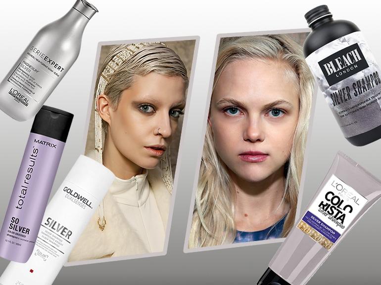 cover-silver-shampoo-mobile