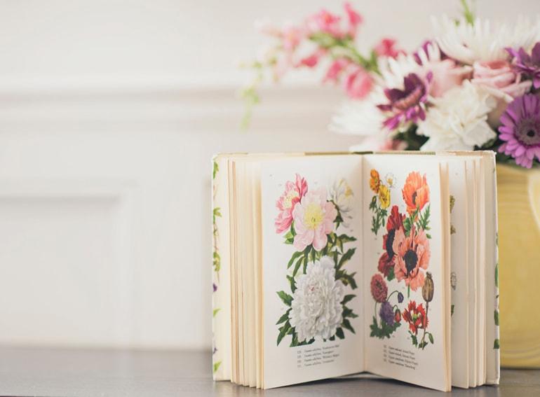 libri primavera mobile