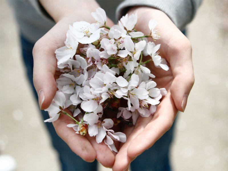 remise-en-forme-rifiorire-a-primavera