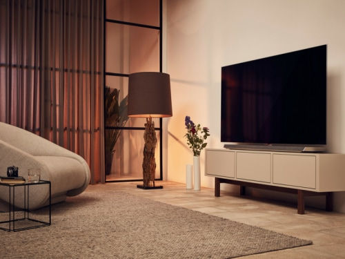 Il Salotto Tv.Le Regole Da Seguire Per Posizionare Correttamente Una Tv In