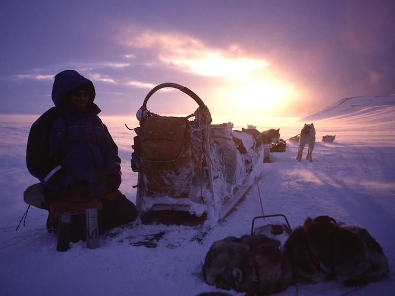 spedizione husky groenlandia