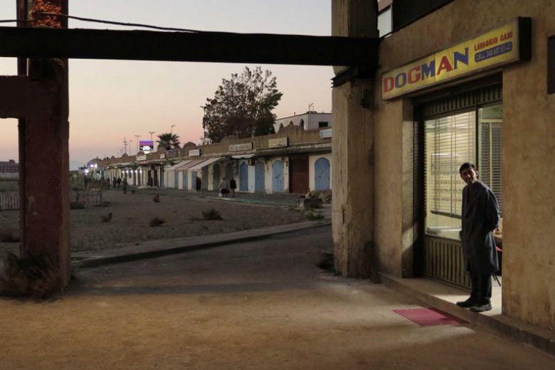Cosa dovete sapere su Dogman, il nuovo film di Garrone