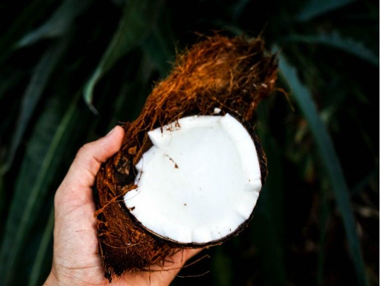 Cocco frutta (Mobile)