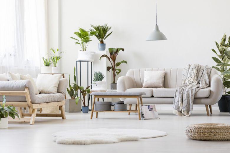 6 idee originali per creare un giardino in casa