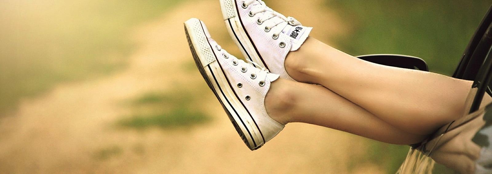 gambe zanzare desktop