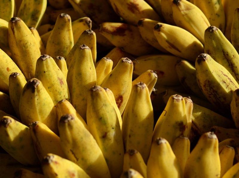banana beauty 1