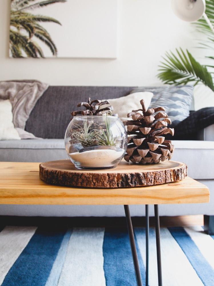 Idee salotto piante