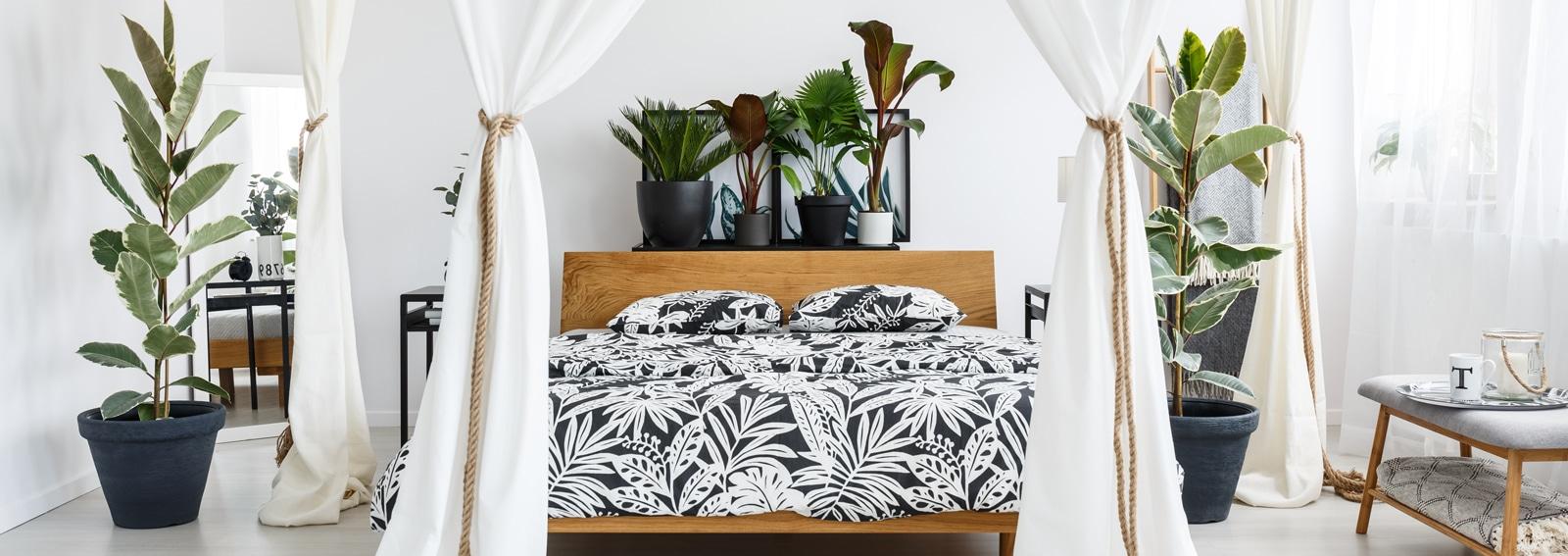 White drapes in bright bedroom