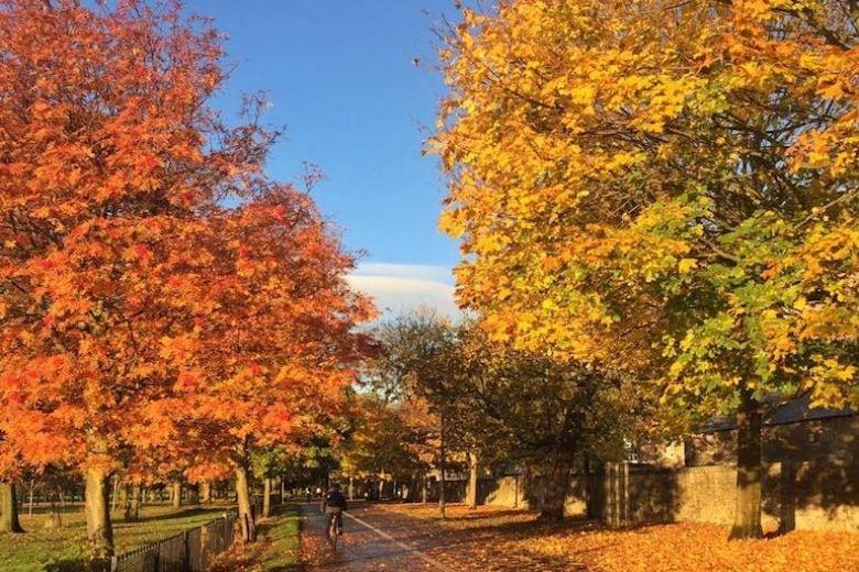 8 città del mondo da visitare in autunno se amate il foliage