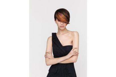 ELGON-(1)-colore-capelli-saloni-autunno-inverno-2018-2019