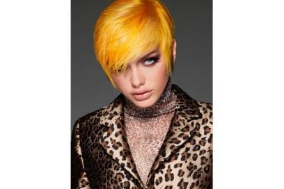 FramesiWildKingdom_01_0339_media colore capelli saloni autunno inverno 2018 2019