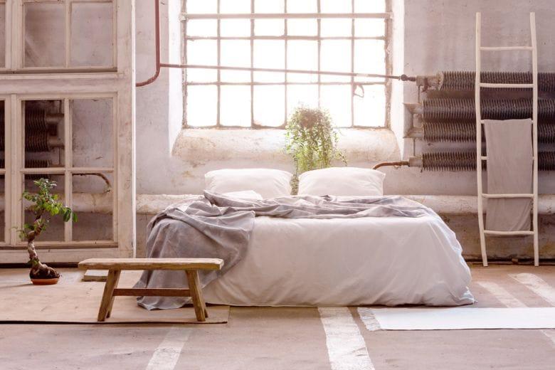 8 idee originali per decorare la casa con i bonsai