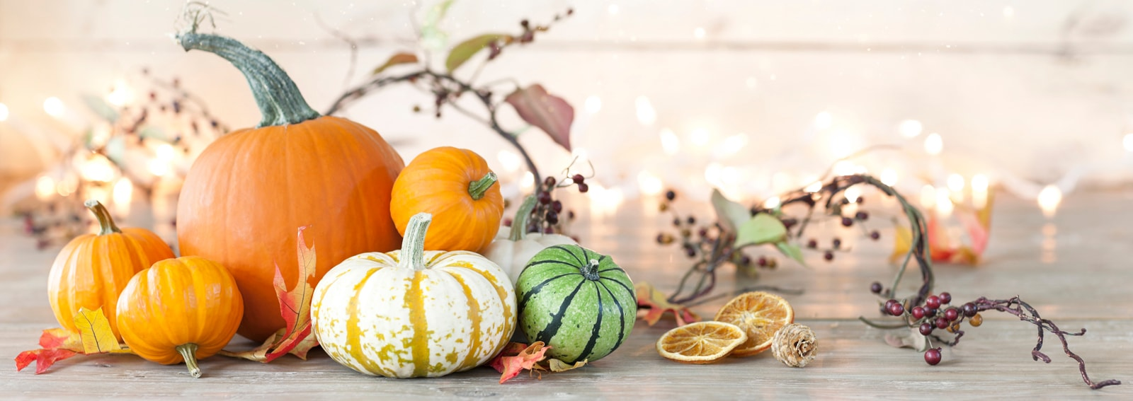 Autumn holiday pumpkin arrangement against an old white wood background