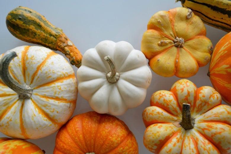 10 cibi (di stagione) da mangiare per essere più belli e sani in autunno
