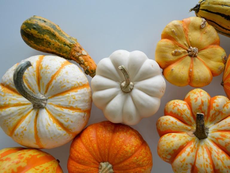 visore-cosa-mangiare-autunno-mobile
