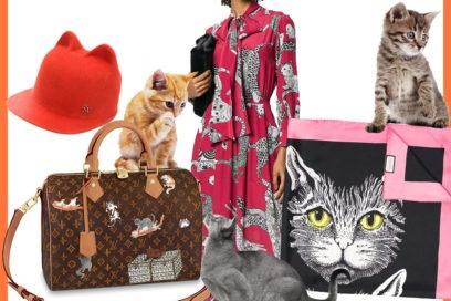 Cat lovers only: il trend dell'autunno, indossare gattini!