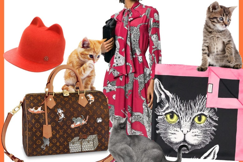 Cat lovers only: il trend dell'autunno, indossare gattini!