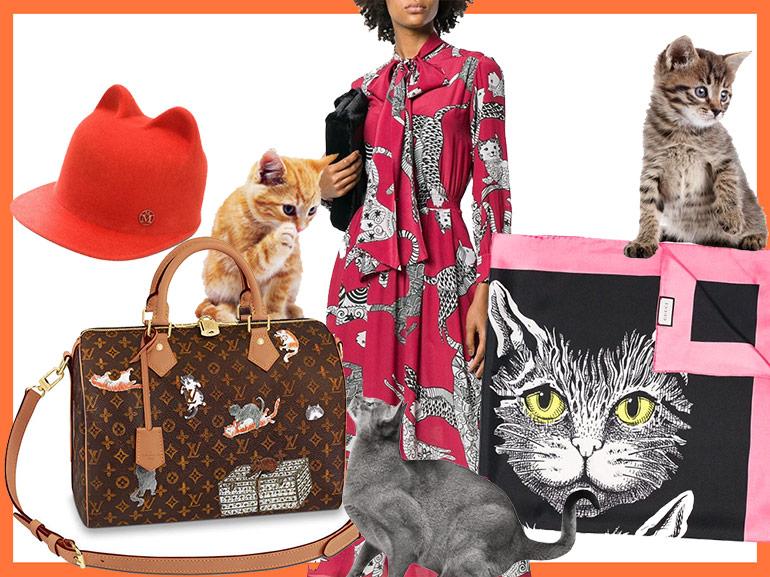 COVER-trend-gatti-MOBILE