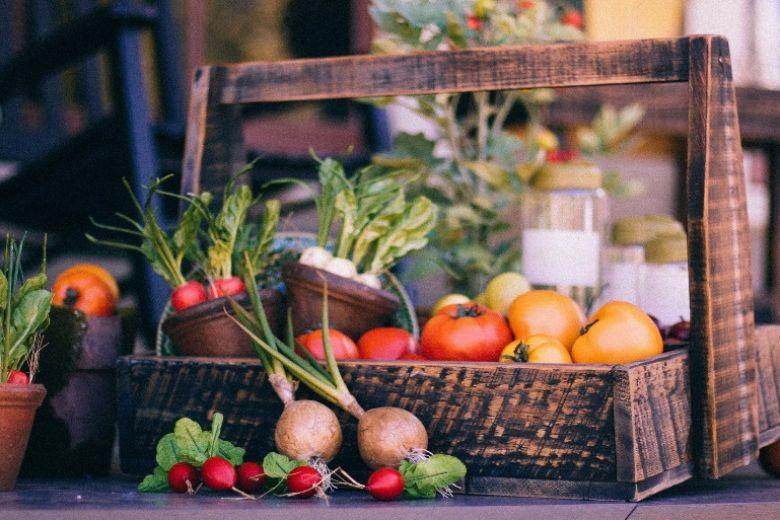 Dieta Mima digiuno: come funziona e perché tutti ne parlano (bene)
