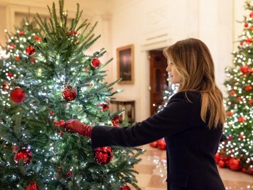 Addobbi Di Natale.Le Decorazioni Di Natale Della Casa Bianca Per Il 2018