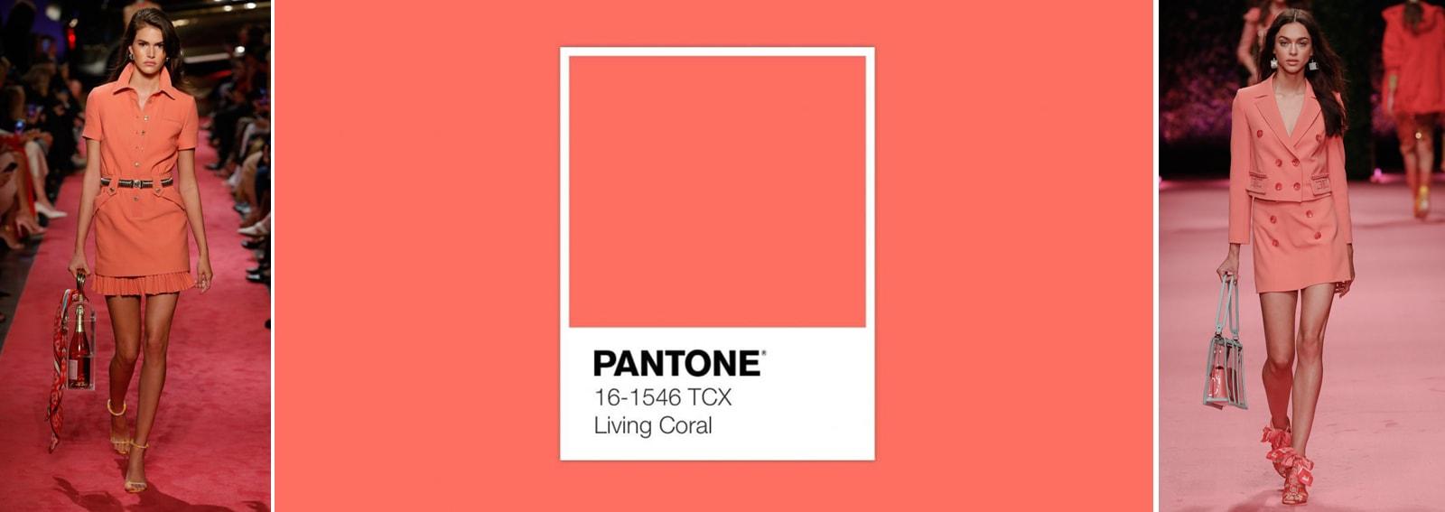 pantone-2019-DESK