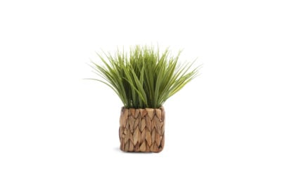 Primark-Homeware_Med-Wicker-Faux-Plant,-$8,-€7,-WK-16-2019