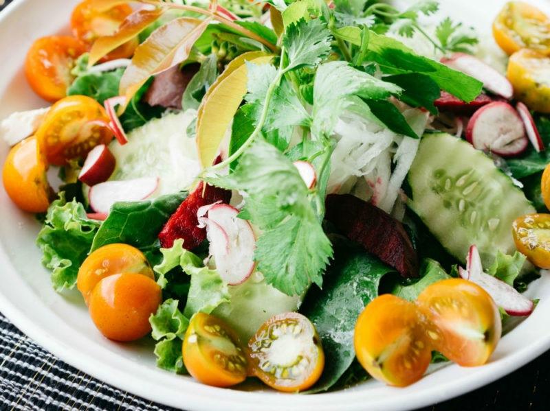 lattuga insalata piatto